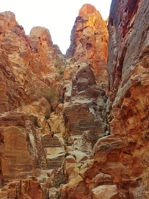 """Petra"" ""Wadi Musa"" ""Jordan"" ""desert"" ""ruins"" ""UNESCO"" ""heritage"" ""archaeology"" ""excavation"" ""wonders of the world"" ""desert"" ""rose red city"" ""sandstone"" ""ruins"" ""historical"" ""sights"" ""things to see jordan"" ""architecture"" ""view"" ""wanderlust"" ""photography"" """"world travel"" ""must-see sights"" ""Treasury"" ""Monastery"" ""Facades"" ""collonade"" ""sandstone"" ""red-rose city"""
