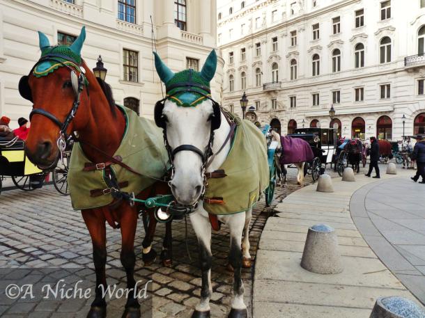 """Horses Vienna"" horse-drawn carriage"" ""sightsee Vienna"" ""unusual forms of transport"" ""unusual sights Vienna"" ""unusua things to do Vienna"" ""views vienna"" ""unusual things to do vienna"" ""wien"" ""vienna travel"" ""solo female tavel vienna"" ""solo travel vienna"" ""sights vienna"" ""vienna history"" ""historic buildings vienna"" ""sights Wien"" ""Austria"" ""Osterreich"" ""Europe"" ""travel Europe"" ""Austria city"" ""Austria sights"" ""Austria capital"" ""24 hours in Vienna"" ""main sights in Vienna"""
