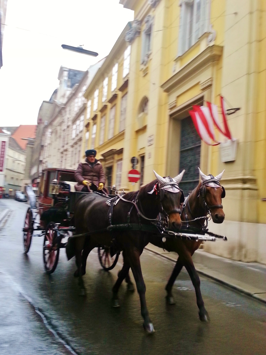 """horse carriage vienna"" ""public transport Vienna"" ""horses Vienna"" ""sights Vienna"" ""must do Vienna"" ""wien travel"" ""travel"" ""austria"" ""Europe sights"""