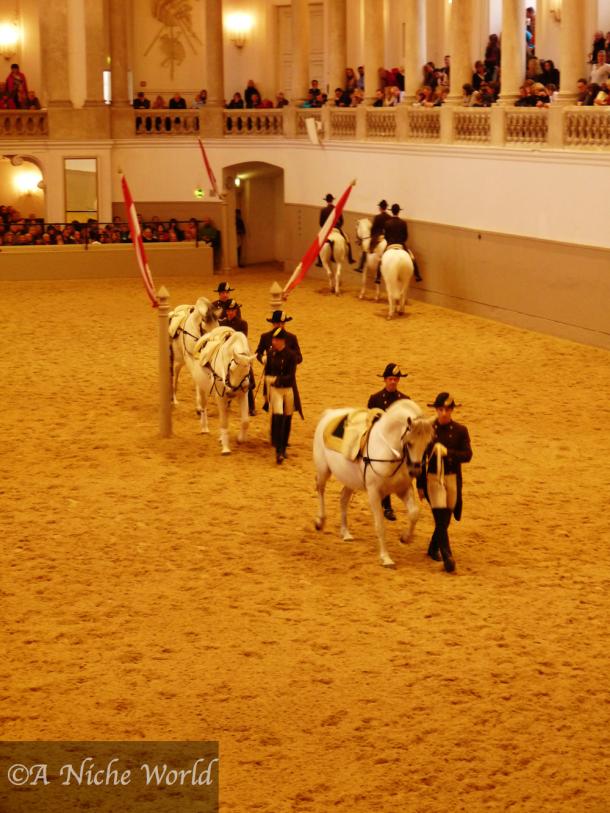 """""""Hofreitschule"""" """"Spanish Riding School"""" """"equestrian Vienna"""" """"lippizaner"""" """"Lippizaner horses Vienna"""" """"baroque winter riding school Vienna"""" """"horses Vienna"""" """"stallions Vienna"""" """"dressage Vienna"""" """"history Vienna"""" Wien"""" """"horses Vienna"""" """"sights Vienna"""" """"must do Vienna"""" """"wien travel"""" """"travel"""" """"austria"""" """"Europe sights"""""""