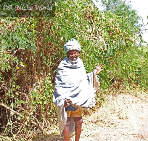 Guarding the entrance to Blue Nile Falls
